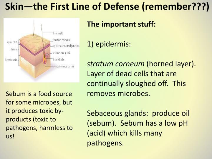 list of gram positive bacteria and their clinical presentation pdf
