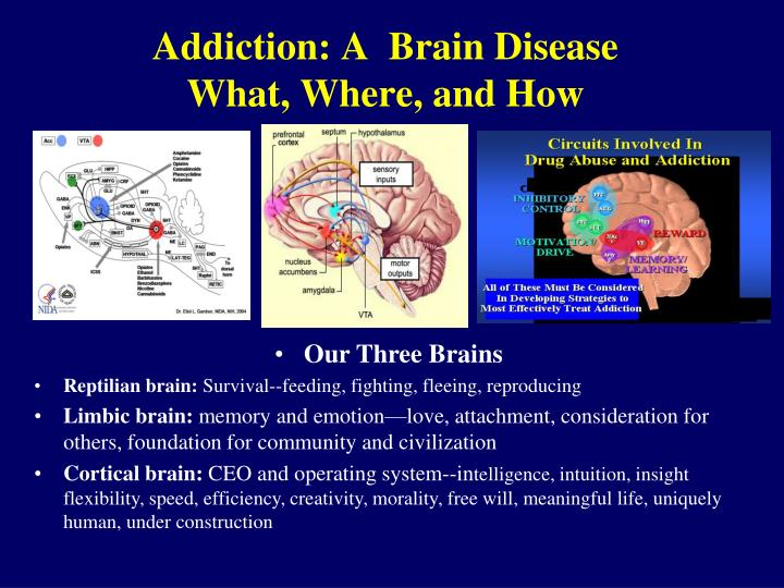 drug addiction a brain controlling disease Scientific advances over the past 20 years have shown that drug addiction is a chronic, relapsing disease that results from the prolonged effects of drugs on the brain as with many other brain diseases, addiction has embedded behavioral and social-context aspects that are important parts of the disorder itself.
