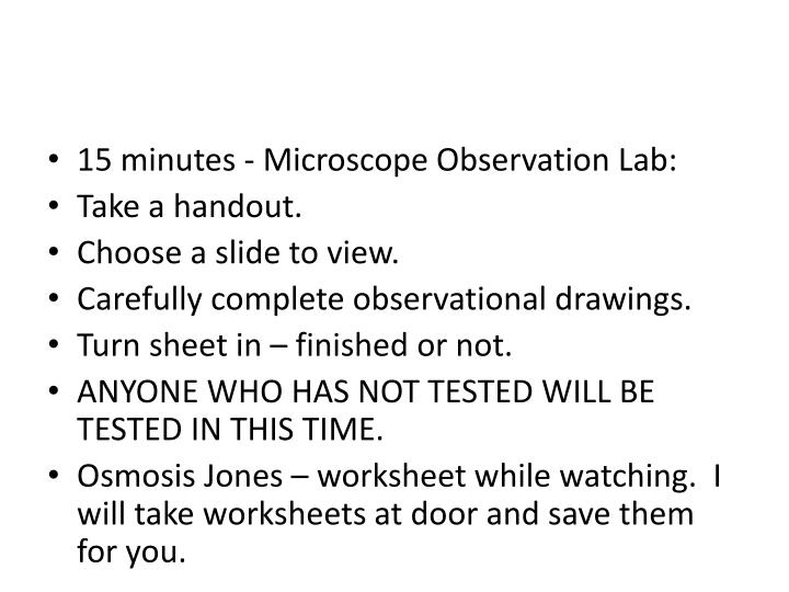 15 minutes - Microscope Observation Lab:
