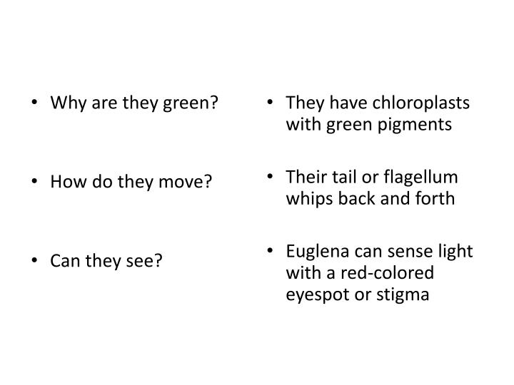 Why are they green?