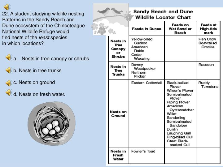 22. A student studying wildlife nesting