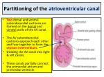 partitioning of the atrioventricular canal