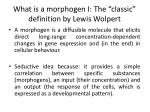 what is a morphogen i the classic definition by lewis wolpert