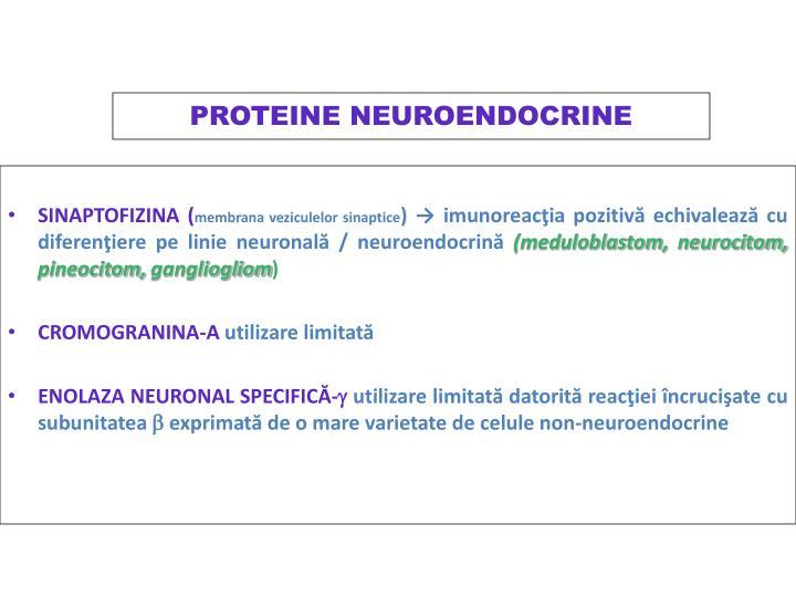 PROTEINE NEUROENDOCRINE