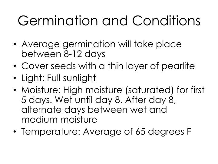 Germination and Conditions