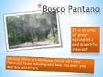 bosco pantano