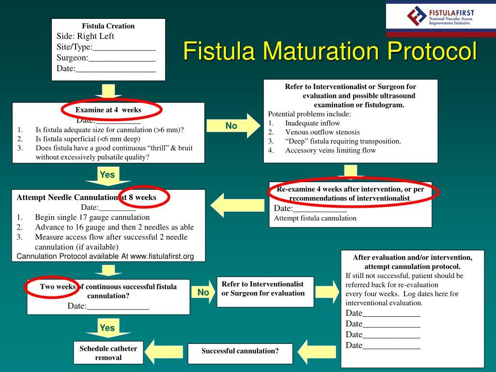 PPT - Management of the Immature Fistula PowerPoint Presentation