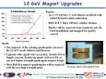 12 gev magnet upgrades