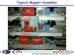 typical magnet assembly