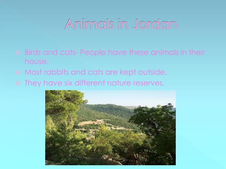 Animals in Jordan