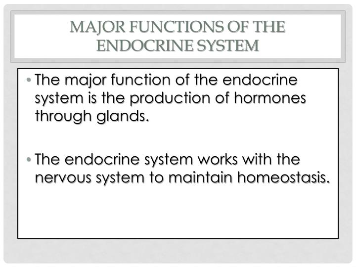 PPT - The Endocrine System PowerPoint Presentation - ID:1944075
