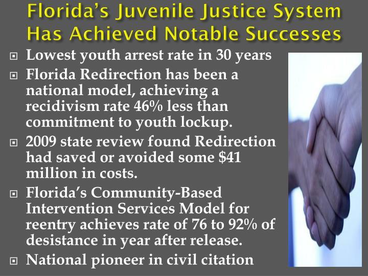 Florida's Juvenile Justice System