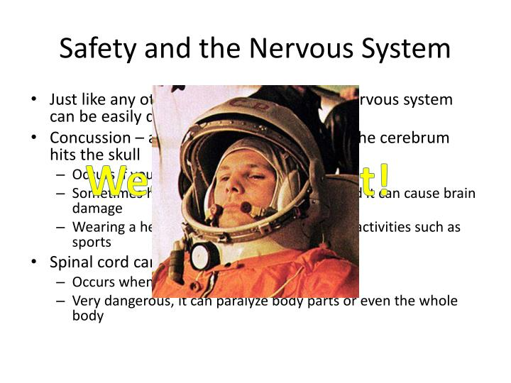 Safety and the Nervous System