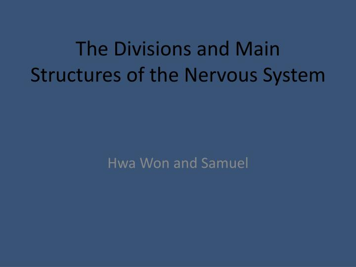 The divisions and main structures of the nervous system