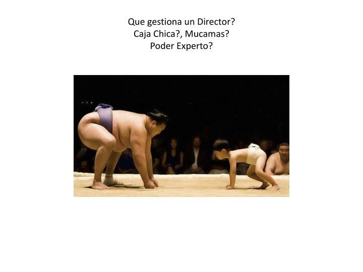 Que gestiona un Director?