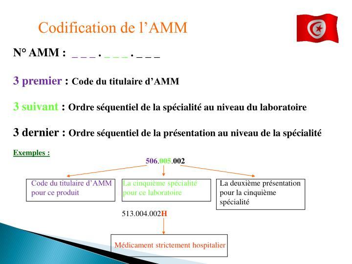 Codification de l'AMM