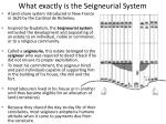 what exactly is the seigneurial system