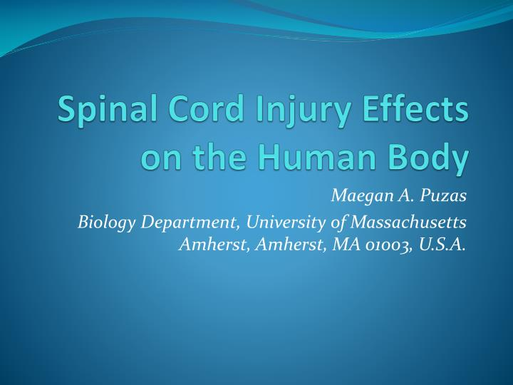 spinal cord injury effects on the human body n.