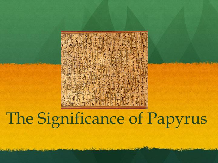 the significance of papyrus n.