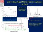 converting algal oil to fuels n alkanes to fuel