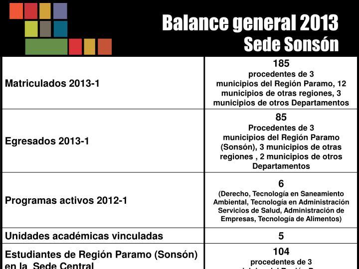 Balance general 2013