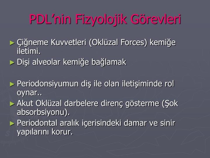 PDL'nin Fizyolojik Görevleri