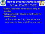 how to process collections