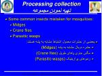 processing collection1