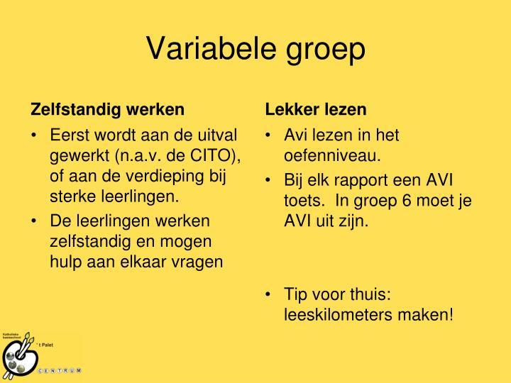 Variabele groep