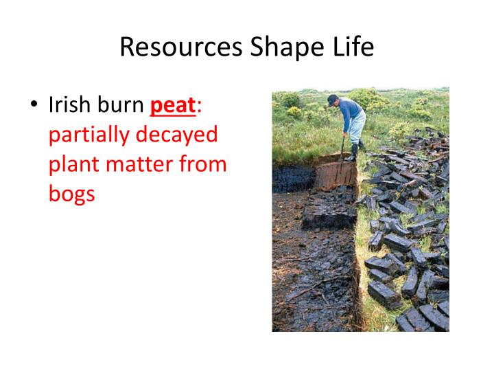 Resources Shape Life