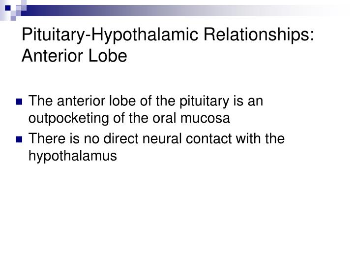Pituitary-Hypothalamic Relationships:
