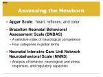 assessing the newborn