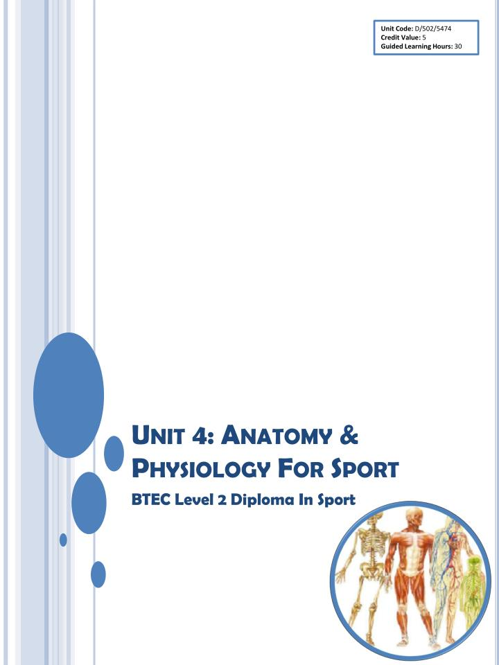 Anatomy unit 1 assignment Research paper Academic Service ...
