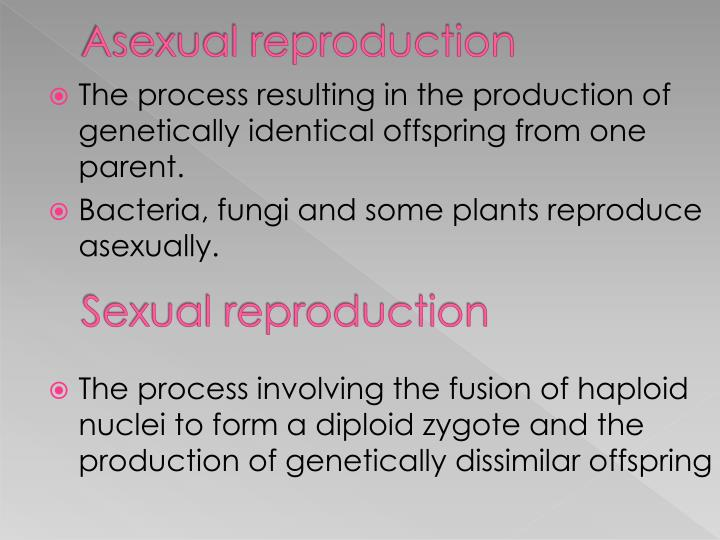 The shedding of the endometrium occurs during asexual reproduction