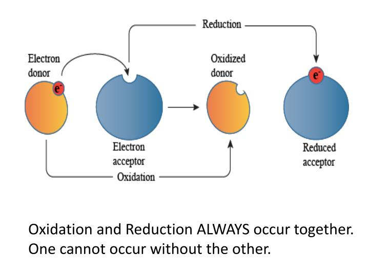 Oxidation and Reduction ALWAYS occur together.