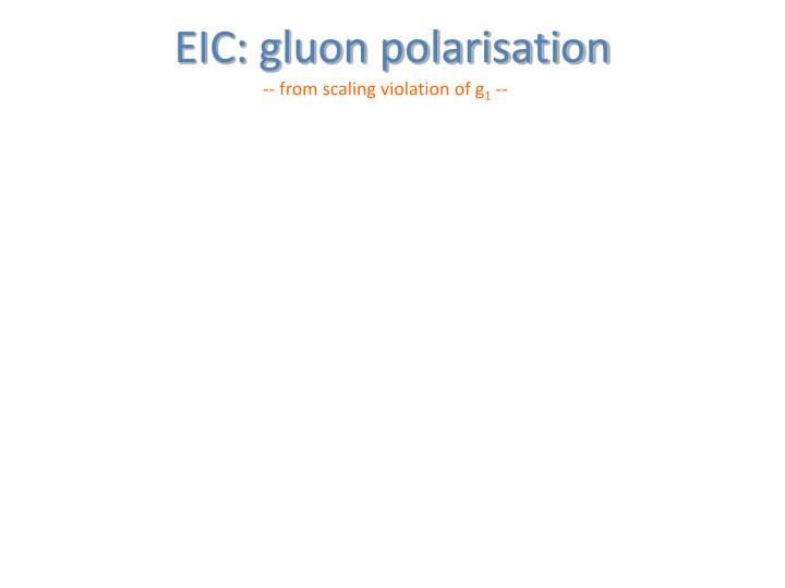 EIC: gluon polarisation