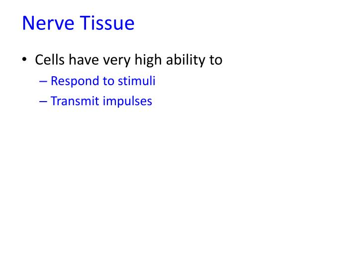 Nerve tissue1