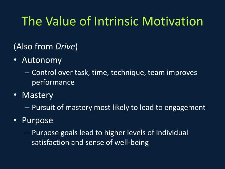 The Value of Intrinsic Motivation