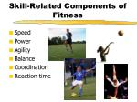 skill related components of fitness