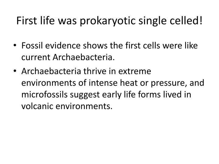 First life was prokaryotic single celled!