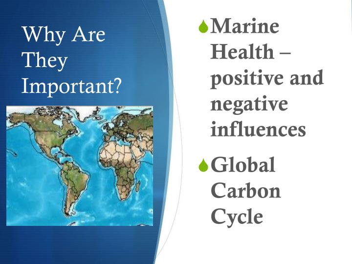 Marine Health – positive and negative influences