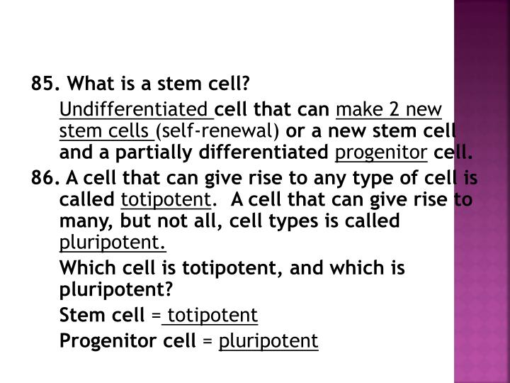 85. What is a stem cell?