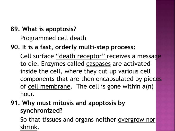 89. What is apoptosis?
