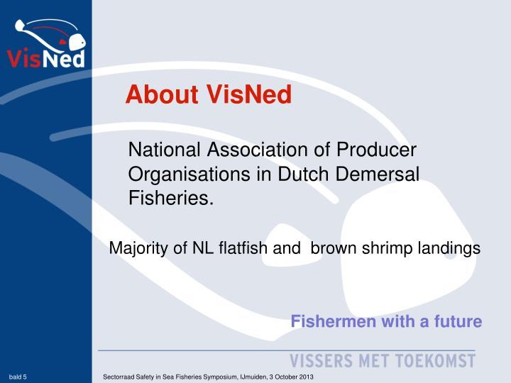 About VisNed