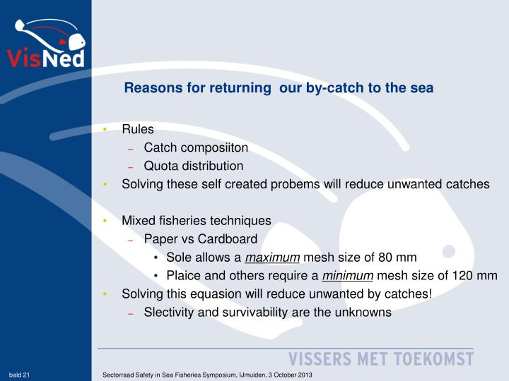 Reasons for returning  our by-catch to the sea