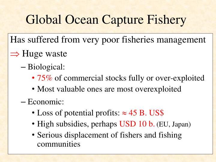 Global ocean capture fishery