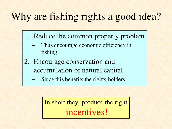 Why are fishing rights a good idea?
