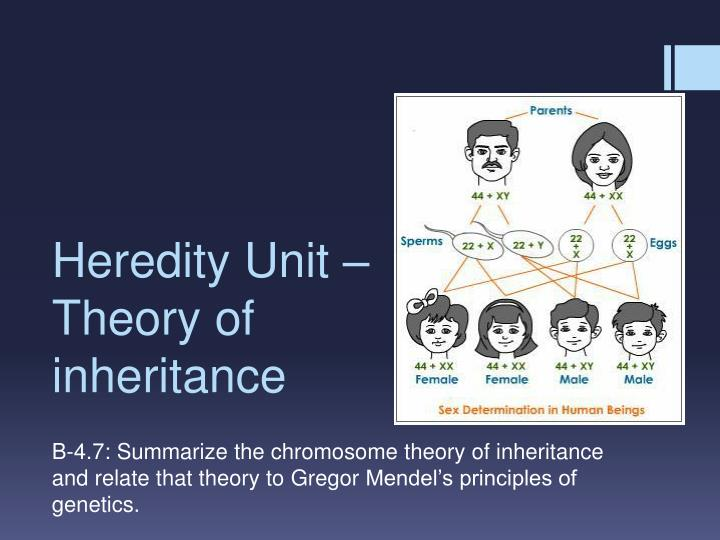 theory of inheritance vs theory of Inherited vs self-made wealth: theory & evidence from a rentier society applying this split to a unique micro data set on inheritance and matrimonial property.