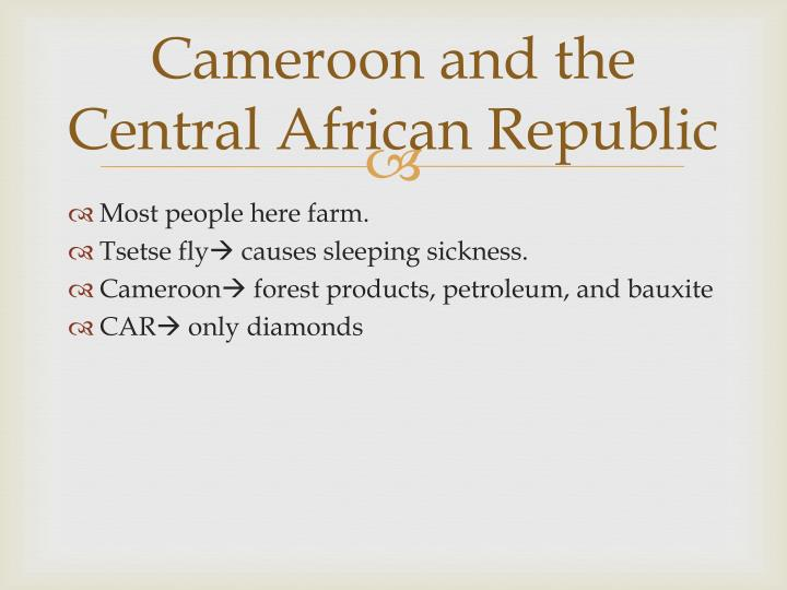 Cameroon and the Central African Republic