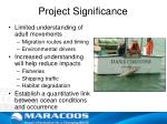 project significance
